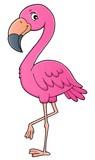 Flamingo topic image 1