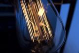 Light bulb incandescent hanging decorated interior room. - 205526383