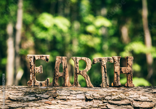 Fotobehang Natuur EARTH writing made from wooden letters in the forest