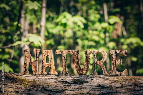 Canvas Natuur NATURE writing made from wooden letters in the forest