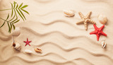 Sea shells on sand. Summer beach background. Top view - 205546777