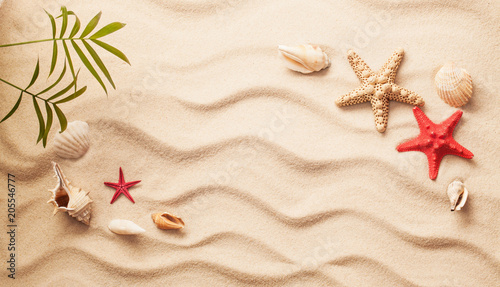 Sea shells on sand. Summer beach background. Top view © Maksim Pasko