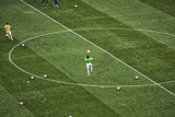 close up of soccer field grass - 205559940