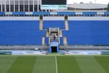 close up of soccer field grass - 205560339