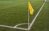 close up of soccer field grass - 205560566