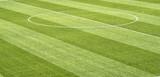 close up of soccer field grass - 205560732
