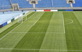 close up of soccer field grass - 205560778