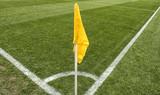 close up of soccer field grass - 205560907