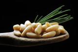 Männyn siemen Pinoli Pinienkern Pine nut حبوب الصنوبر Pignon de pin Pinolo Orzeszki piniowe Piñón Pijnboompit Кедровый орех