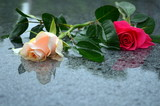 Rosen auf nassem Marmor
