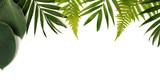 frame of green leaves - 205641798