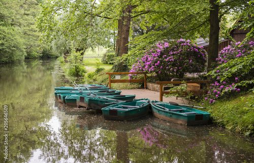 Aluminium Azalea green boats and flowering rhododendrons at the river