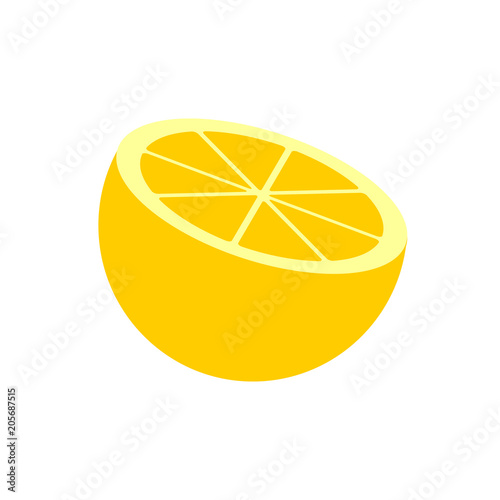 Vector lemon of citrus fruits in the section