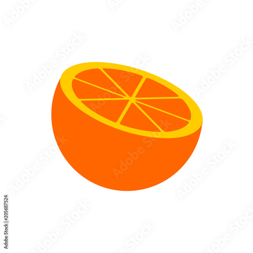 Vector orange of citrus fruits in the section