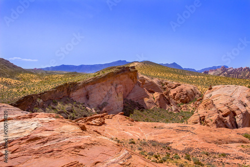 Canvas Zalm Desert Red Sandstone Hills