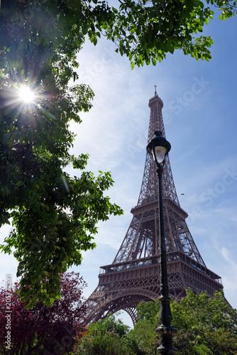Eiffel tower and Champs de Mars garden