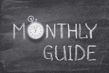 monthly guide watch - 205722708
