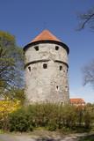 Tallinn - Muraille - 205734137