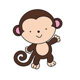 monkey for illustrations