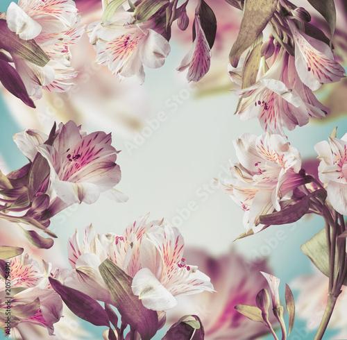 Piękny kwiatowy wzór pastelowy kolor ramki z różowe kwiaty na turkus tło