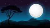Savanna Forest in Dark Night - 205759590