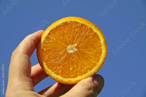 orange in hand against the background of goube sky