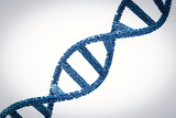 dna helix or dna structure - 205761579