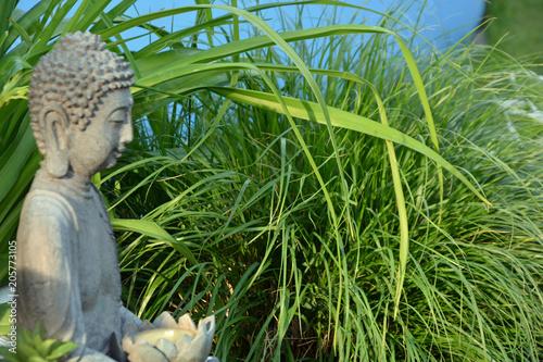Canvas Boeddha Buddha Hintergrund
