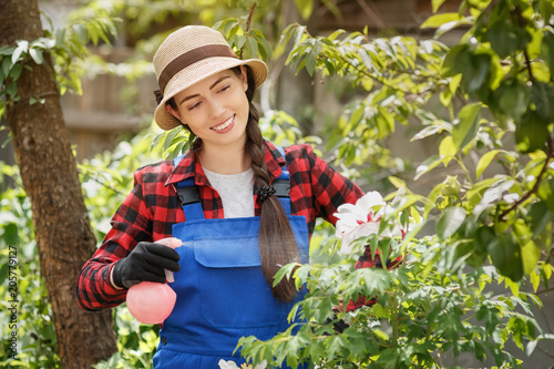 Poster gardener spraying pesticide or water on flowers