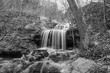 Tanyard Creek Waterfall - 205786973