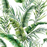 Watercolor tropical seamless pattern with coconut and banana palm leaves. Hand painted greenery exotic branch on white background. Botanical illustration for design, print, fabric or background. - 205800766