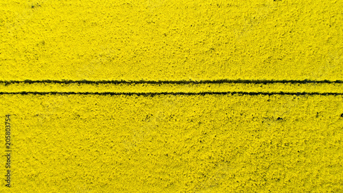 Plexiglas Meloen Aerial view of colorful rapeseed field in spring. Close-up.
