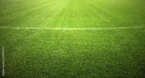 Leinwandbild Motiv Ball auf dem Fussballplatz