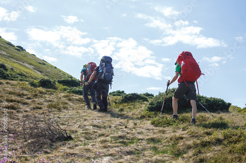 back view of three hikers with backpacks and trekking poles walking in romanian highland