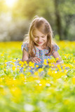 Happy little girl on spring blooming meadow - 205823906