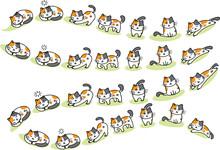 Cats Cartoon  Sticker