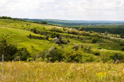 Plexiglas Pistache зеленый холм с деревьями