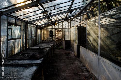 Fotobehang Gebouw in Puin Greenhouse