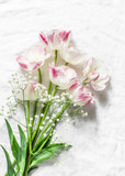 Garden pink white tulips on a light background, top view. Flat lay