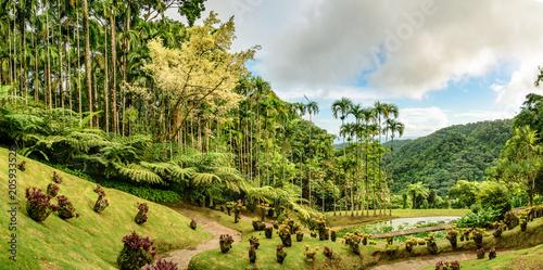Un point de vue du Jardin de Balata