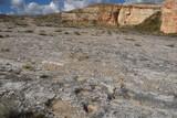 Cava Pontrelli - Altamura (Ba) - Impronte di Dinosauri
