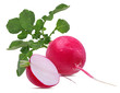 Quadro Fresh red radish isolated on white background with clipping path