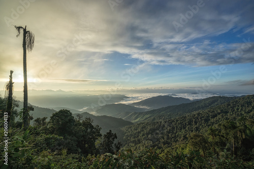 Fantastic morning mountain landscape, scenery of high green mountains, blue sky with clouds, beauty world.