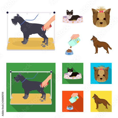 A dog in a lounger , a muzzle of a pet, a bowl with a feed, a sheepdog with a ball in his teeth. Pet ,dog care set collection icons in cartoon,flat style vector symbol stock illustration web.