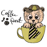Vector illustration bear in a cup and writing coffee first