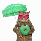 The cat in sunglasses holds a green parasol and a bitten donut. White background. - 206056378