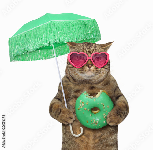 The cat in sunglasses holds a green parasol and a bitten donut. White background.