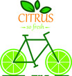 Citrus Bicycle - 206061931