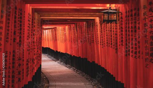 Fotobehang Kyoto Toriis