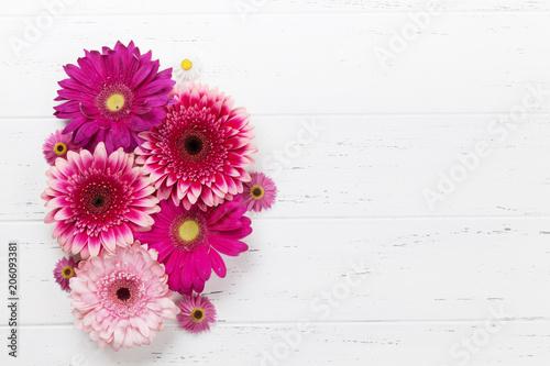 Plexiglas Gerbera Gerbera flowers